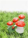 Lucky charms (fly agaric mushrooms, 4-leaf clover) in grass Stock Photo - Premium Royalty-Free, Artist: Visuals Unlimited, Code: 659-03530710