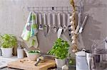 Kitchen utensils, string of garlic, basil, Parmesan etc. Stock Photo - Premium Royalty-Free, Artist: Aflo Relax, Code: 659-03533720