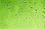 Drops of water on green surface Stock Photo - Premium Royalty-Free, Artist: Eyecandy Pro, Code: 659-03533938