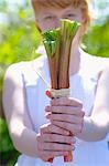 Girl holding sticks of rhubarb in her hands Stock Photo - Premium Royalty-Free, Artist: Photocuisine, Code: 659-03537363