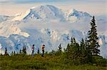 Young couple view Mt McKinley and the Alaska Range in Denali National Park Alaska summer Stock Photo - Premium Rights-Managed, Artist: AlaskaStock, Code: 854-03538130