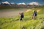 Two backpackers hiking in tundra and wildflowers at Grassy Pass near Eielson visitor center Denali NP Alaska Stock Photo - Premium Rights-Managed, Artist: AlaskaStock, Code: 854-03538163