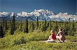 Young couple view Mt McKinley and the Alaska Range in Denali NP Alaska summer Stock Photo - Premium Rights-Managed, Artist: AlaskaStock, Code: 854-03538172