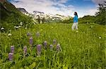Woman walking in grass in Kenai Mountains along Lost Lake Trail near Seward, Alaska during Summer Stock Photo - Premium Rights-Managed, Artist: AlaskaStock, Code: 854-03538186