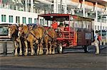 Horse drawn wagon waits for cruise ship passengers at the city dock in Ketchikan, Alaska Stock Photo - Premium Rights-Managed, Artist: AlaskaStock, Code: 854-03538625