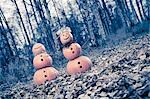 Two Jack-O-Lantern people standing in forest. One with Fireweed flowers for hair, a leaf necklace, and leaves on the ground during Fall in Anchorage Alaska. Stock Photo - Premium Rights-Managed, Artist: AlaskaStock, Code: 854-03538671