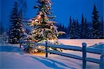 Decorated Christmas tree along snow covered fence rail @ night Anchorage Southcentral Alaska Winter Stock Photo - Premium Rights-Managed, Artist: AlaskaStock, Code: 854-03539043