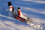 Large & small snowman ride on dog sled in deep snow in afternoon Interior Fairbanks Alaska winter Stock Photo - Premium Rights-Managed, Artist: AlaskaStock, Code: 854-03539262
