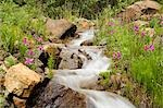 Stream near Eielson visitor center  Denali National Park Alaska Stock Photo - Premium Rights-Managed, Artist: AlaskaStock, Code: 854-03539324