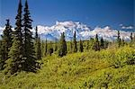 Mt McKinley and the Alaska Range as seen from inside Denali National Park Alaska summer Stock Photo - Premium Rights-Managed, Artist: AlaskaStock, Code: 854-03539441