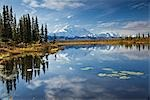 The north face and peak of Mt. Mckinley is reflected in a small tundra pond in Denali National Park, Alaska Stock Photo - Premium Rights-Managed, Artist: AlaskaStock, Code: 854-03539454