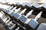 Dumbbells in Gym Stock Photo - Premium Rights-Managed, Artist: Ty Milford, Code: 700-03554458
