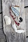 Beach combing objects on plank of wood Stock Photo - Premium Royalty-Free, Artist: Minden Pictures, Code: 649-03566419