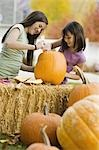 Girls carving pumpkin Stock Photo - Premium Royalty-Free, Artist: Sheltered Images, Code: 621-03569215
