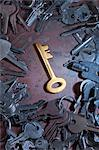 Golden Key in the Middle of a Pile of Assorted Keys Stock Photo - Premium Rights-Managed, Artist: Peter Christopher, Code: 700-03586628