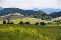 Landscape, British Columbia, Canada Stock Photo - Premium Royalty-Freenull, Code: 600-03586909