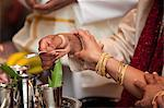 Traditional Hindu Wedding Ceremony Stock Photo - Premium Rights-Managed, Artist: Ikonica, Code: 700-03587185