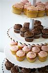 Frosted Cupcakes Stock Photo - Premium Rights-Managed, Artist: Michael Alberstat, Code: 700-03587303