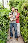 Portrait of Couple With Pug Stock Photo - Premium Rights-Managed, Artist: Raoul Minsart, Code: 700-03596313