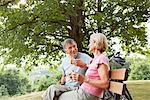 Mature couple having lunch in park
