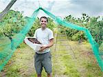 Man in orchard holding box of cherries Stock Photo - Premium Royalty-Free, Artist: Aflo Relax, Code: 649-03606531