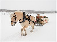 A horse pulling a sleigh full of people through the snow Stock Photo - Premium Royalty-Freenull, Code: 618-03612656