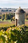 Vineyards of Chateau Saint-Georges, Saint-Georges, Gironde, Aquitaine, France Stock Photo - Premium Rights-Managed, Artist: Patrick Chatelain, Code: 700-03613003