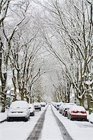 Winter, West Point Grey, Vancouver, British Columbia, Canada Stock Photo - Premium Royalty-Freenull, Code: 600-03615885