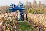 Grape Harvester in Chateau Saint-Georges Vineyard, Saint-Emilion, Bordeaux, Gironde, Aquitaine, France Stock Photo - Premium Rights-Managed, Artist: Patrick Chatelain, Code: 700-03615903