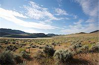Landscape Near Oliver, British Columbia, Canada Stock Photo - Premium Rights-Managednull, Code: 700-03621367