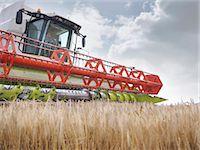 Farmer driving combine harvester Stock Photo - Premium Royalty-Freenull, Code: 649-03622422