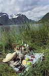 Picnic in Norway Stock Photo - Premium Rights-Managed, Artist: Photocuisine, Code: 825-03627575