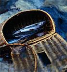 Fishing basket full of pikes Stock Photo - Premium Rights-Managed, Artist: Photocuisine, Code: 825-03627984