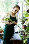 Female florist arranging flowers in shop Stock Photo - Premium Royalty-Freenull, Code: 632-03630003