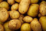Pile of freshly dug potatoes, full frame Stock Photo - Premium Royalty-Free, Artist: Aurora Photos, Code: 618-03630807