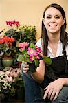 Florist Employee Kneeling Among Flower Display Stock Photo - Premium Royalty-Freenull, Code: 618-03631099