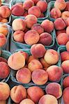 Fresh Peaches Stock Photo - Premium Royalty-Free, Artist: Ron Fehling, Code: 600-03638960