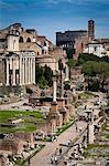 The Forum, Rome, Italy Stock Photo - Premium Rights-Managed, Artist: R. Ian Lloyd, Code: 700-03639086