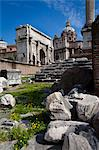 The Forum, Rome, Italy Stock Photo - Premium Rights-Managed, Artist: R. Ian Lloyd, Code: 700-03639088