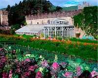 Glenveagh Castle, Co Donegal, Ireland; Walled Potager, Orangery, Dahlias And Cabbage Stock Photo - Premium Rights-Managednull, Code: 832-03639744