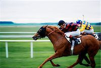 riding crop - Horse Racing; Two Horses Neck In Neck During A Horse Race Stock Photo - Premium Rights-Managednull, Code: 832-03639914