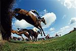 Gorey, Co Wexford, Ireland, Horse Racing, Point To Point