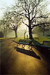 Dublin - Parks, St. Stephens Green, Stock Photo - Premium Rights-Managed, Artist: IIC, Code: 832-03640516