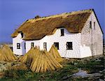 Traditional Thatching, Connemara, Stock Photo - Premium Rights-Managed, Artist: IIC, Code: 832-03640541