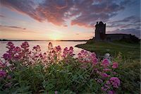 Sunset Over Dunguaire Castle, Kinvara, County Galway, Ireland Stock Photo - Premium Rights-Managednull, Code: 832-03640849