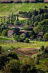 Farm near Orvieto, Umbria, Italy Stock Photo - Premium Rights-Managed, Artist: R. Ian Lloyd, Code: 700-03641198