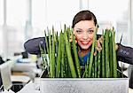 Smiling businesswoman peering from behind plant in office Stock Photo - Premium Royalty-Free, Artist: Photocuisine, Code: 635-03641998