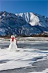 Snowman with a red scarf and black top hat sitting on the frozen Nenana River with the Alaska Range foothills in the background, Southcentral Alaska, Winter Stock Photo - Premium Rights-Managed, Artist: AlaskaStock, Code: 854-03646503
