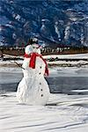 Snowman with a red scarf and black top hat sitting on the frozen Nenana River with the Alaska Range foothills in the background, Southcentral Alaska, Winter Stock Photo - Premium Rights-Managed, Artist: AlaskaStock, Code: 854-03646505