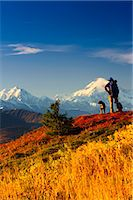 A male backpacker and his dog enjoy the view of Mt. McKinley while backpacking in Peters Hills, Denali State Park, Southcentral Alaska, Fall/n Stock Photo - Premium Rights-Managednull, Code: 854-03646867